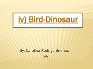 iv)  Bird-Dinosaur