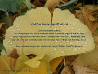 Gulden Snede  RijnWaalpad Omschrijving kunstproject