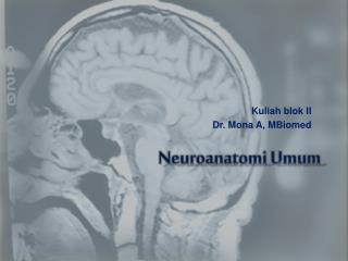 Neuroanatomi Umum