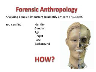 Analyzing bones is important to identify a victim or suspect. You can find: 		Identity 		Gender