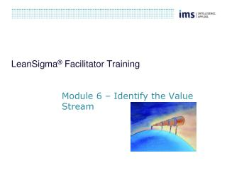 LeanSigma ®  Facilitator Training