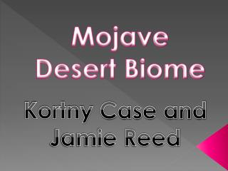 Mojave Desert Biome