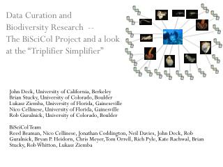 John Deck, University of California, Berkeley Brian  Stucky , University of Colorado, Boulder