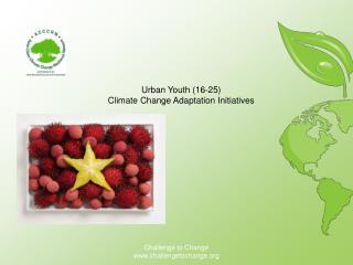 Urban  Youth  (16?25 ) Climate  C hange Adaptation Initiatives