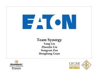 Team Synergy Yang Liu Zhaozhe Liu Songyun Zou Hongliang Guan