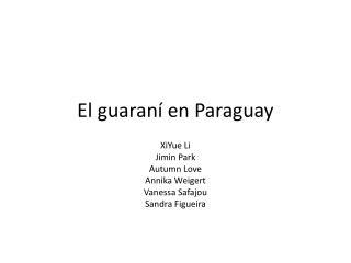 El guaraní  en Paraguay
