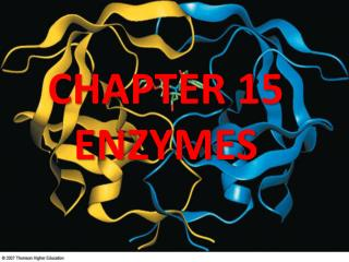 CHAPTER 15 ENZYMES