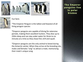 The Emperor  penguins live in polar  biomes