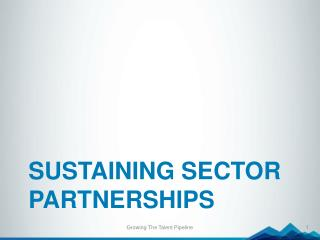 Sustaining Sector partnerships