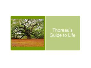 Thoreau's Guide to Life