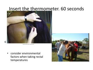 Insert the thermometer. 60 seconds