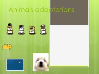 Animals adaptations