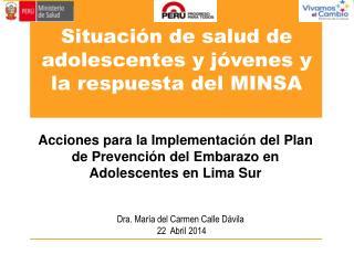 Acciones para la Implementación del Plan de Prevención del Embarazo en Adolescentes en Lima Sur