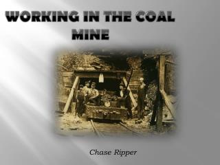 Working in the Coal Mine