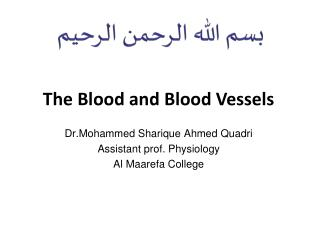 The  Blood and  B lood Vessels