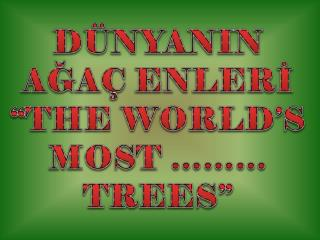 "DÜNYANIN AĞAÇ  ENLERİ ""THE WORLD'S MOST ……… TREES"""