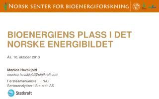 Bioenergiens plass  I  det norske energibildet