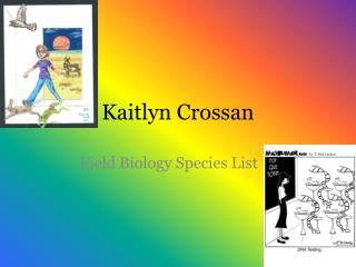 Kaitlyn Crossan