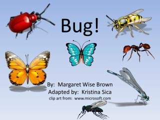 Bug! By:  Margaret Wise Brown Adapted by:  Kristina Sica clip art from:  www.microsoft.com