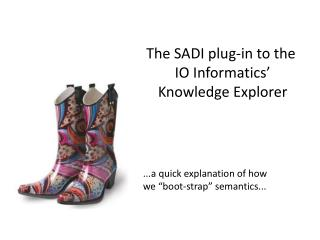 The SADI plug-in to the  IO Informatics' Knowledge Explorer