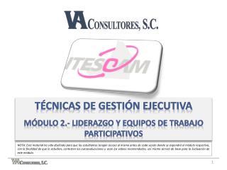 Técnicas de gestión ejecutiva Módulo  2.- liderazgo y equipos de trabajo participativos