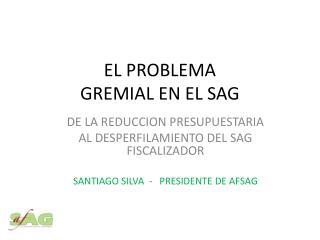 EL PROBLEMA  GREMIAL  EN EL SAG