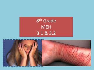 8 th  Grade MEH  3.1 & 3.2