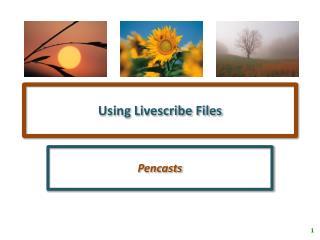 Using Livescribe Files