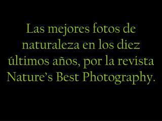 Las mejores fotos de naturaleza en los diez