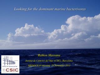 Ramon Massana Institut de Ciències del Mar (CSIC), Barcelona MEDOCEAN meeting, 28 November 2013