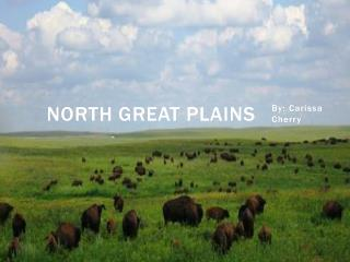 North Great Plains