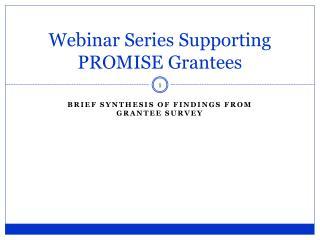 Webinar Series Supporting PROMISE Grantees