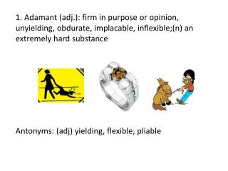 Antonyms: ( adj ) yielding, flexible, pliable