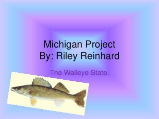 Michigan Project By: Riley Reinhard