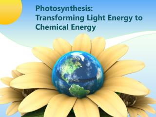 Photosynthesis: Transforming Light Energy to Chemical Energy