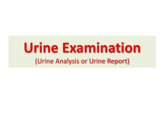 Urine  Examination (Urine Analysis or Urine Report)