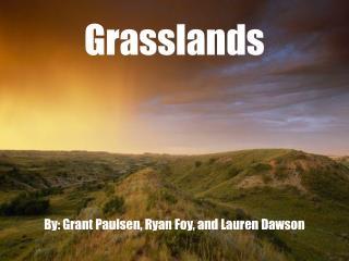 Grasslands By: Grant Paulsen, Ryan Foy, and Lauren Dawson