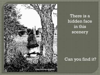 There is a hidden face in this scenery