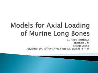 Models for Axial Loading of  Murine  Long Bones