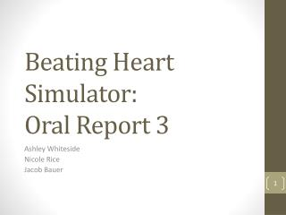 Beating Heart Simulator: Oral Report 3