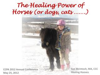 The Healing Power of Horses  (or dogs, cats …….)