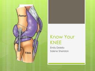 Know Your KNEE