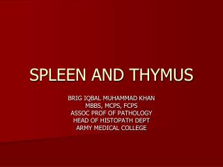 SPLEEN AND THYMUS