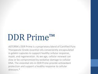 DDR Prime™
