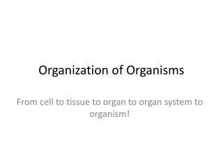 Organization of Organisms