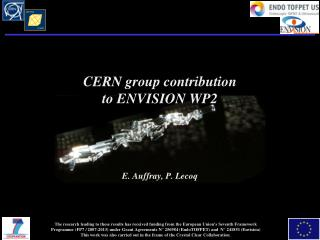 CERN group contribution to ENVISION WP2