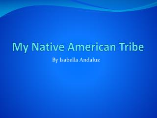 My Native American Tribe