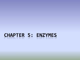 chapter  5: Enzymes