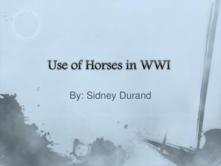 Use of Horses in WWI
