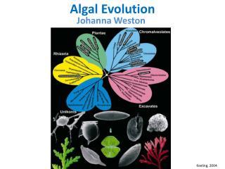 Algal Evolution